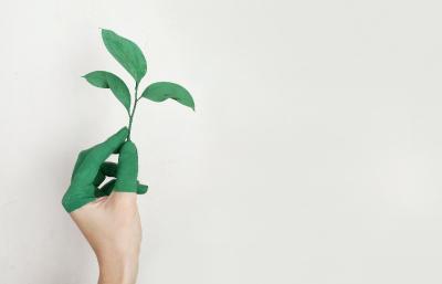 QUELLES SONT LES PRECISIONS APPORTEES AU CONTRAT DE PERFORMANCE ENERGETIQUE ?